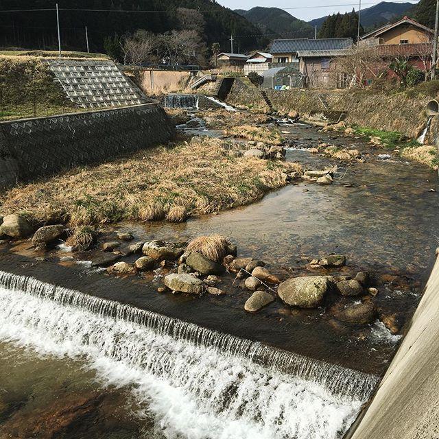 西粟倉村は水が豊か。