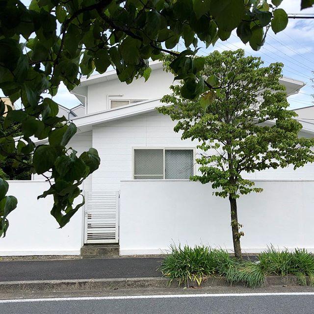 1554 王禅寺東1丁目(20180506)